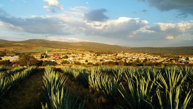 A Mexican landscape