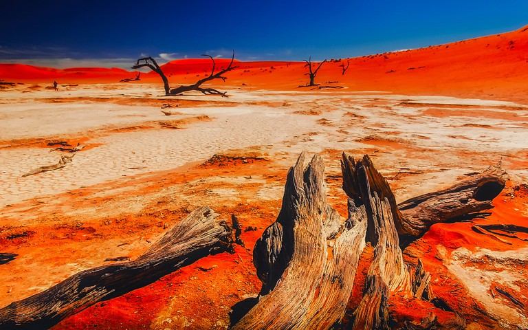 Namibia is known for its striking dessert landscape