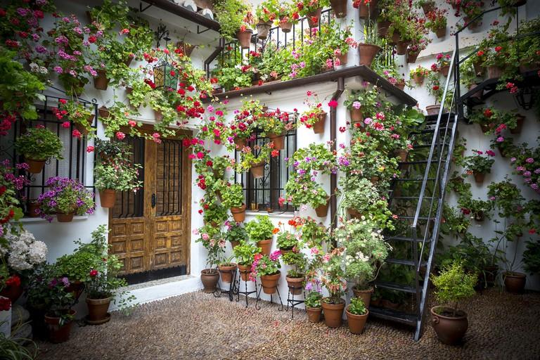 One of Córdoba's beautiful courtyards; poperopop, pixabay
