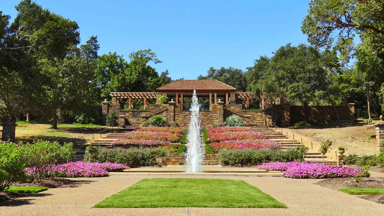 Rose Garden at Fort Worth Botanical Garden. Fort Worth, Texas