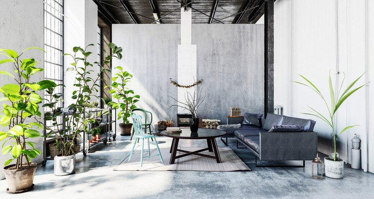 Home interior with greenery
