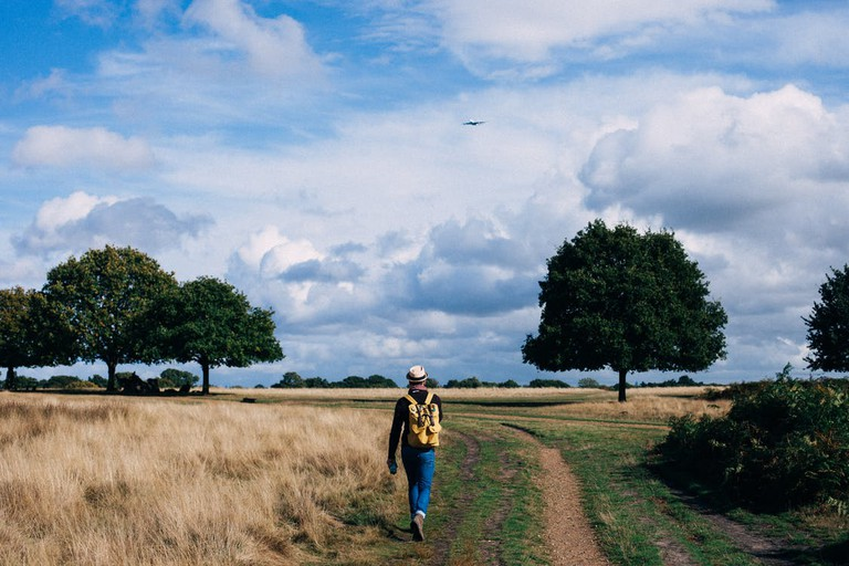 Man walking through a field