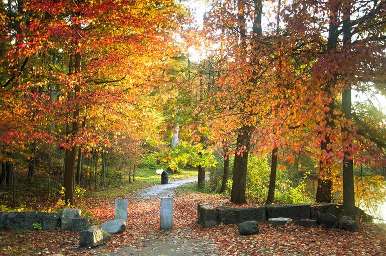Franklin Park in the Fall   © Sarah Nichols/Flickr
