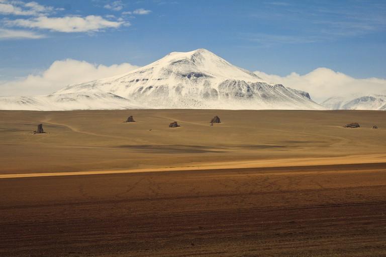 Dali Desert