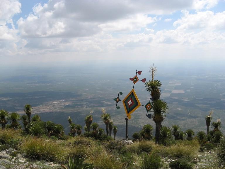 Wikiruta Desert