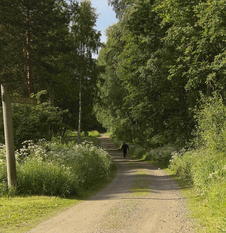 A Jyväskylä trail in summer / Marjaana Pato / Flickr