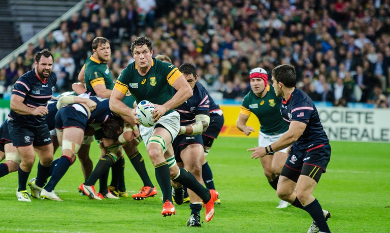 Springbok rugby players in 2015