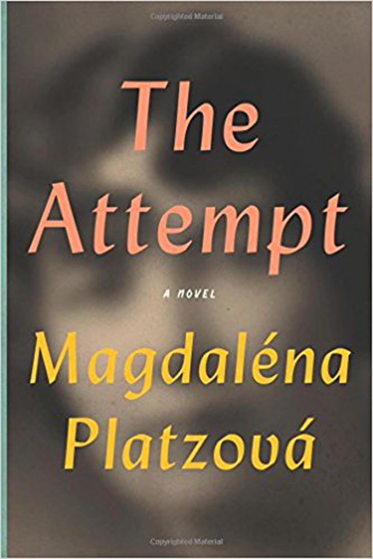 The Attempt | Bellevue Literary Press