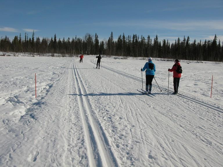Cross country skiing in Levi / Leo-setä / Flickr
