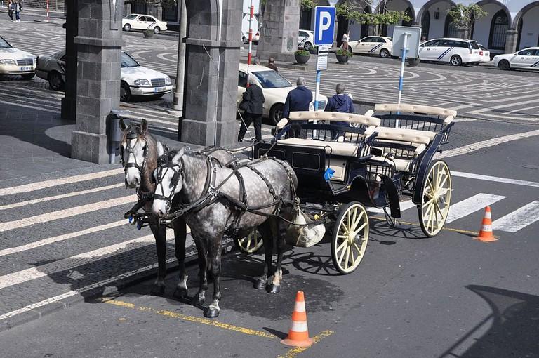 Enjoy a romantic horse-drawn carriage ride through Ponta Delgada