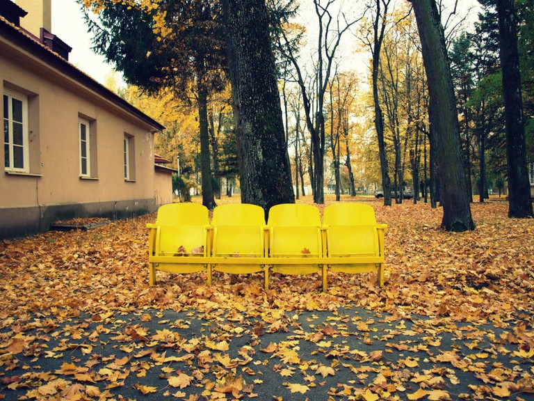 Autumn in Antakalnis