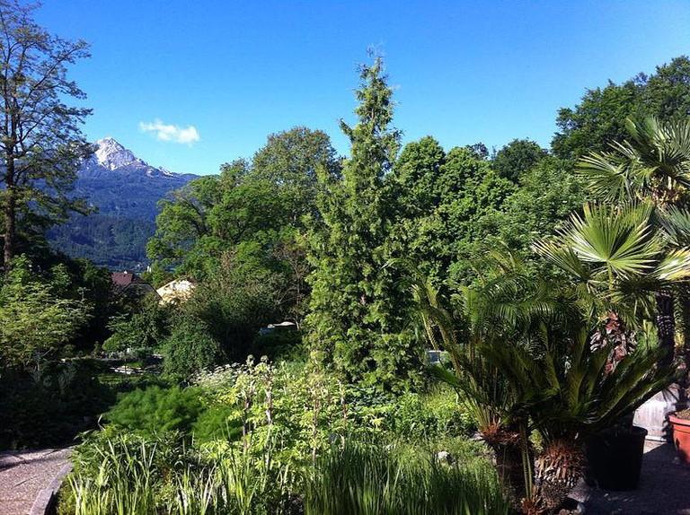Botanical Garden of the University of Innsbruck