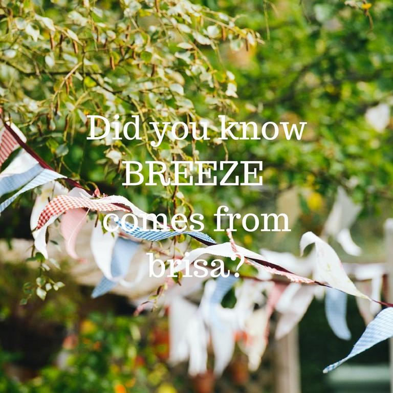 Breeze / © Culture Trip