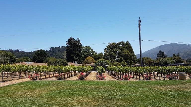 Folktale Winery in Monterey