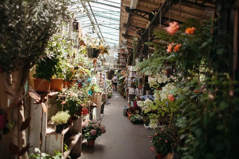 Ile de la Cité flower shop │© Kim Grant for Culture Trip