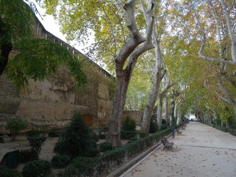 Jardin del Beso, Xàtiva