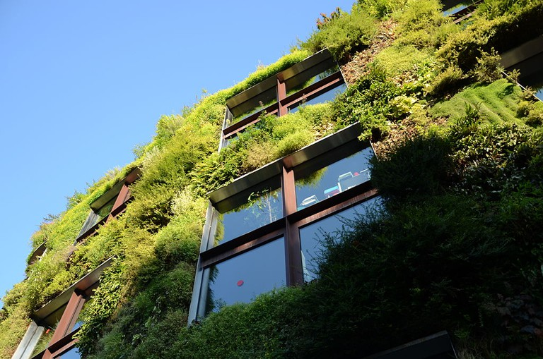 Living wall in Paris │© Steven Lek / Wikimedia Commons