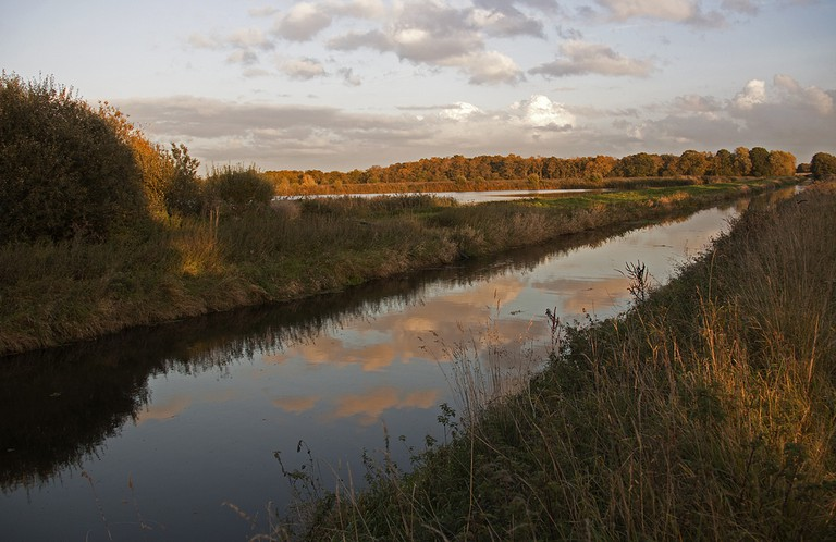 Shapwick Heath | © Marilyn Peddle/Flickr