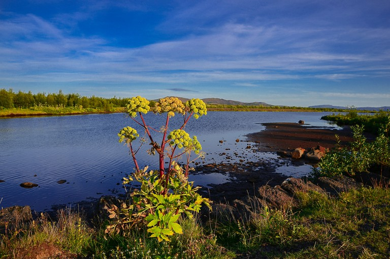 Þingvellir | © Theo Crazzolara/Flickr