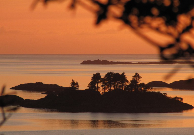Peach Sunset and Scots Pines, Lochaber