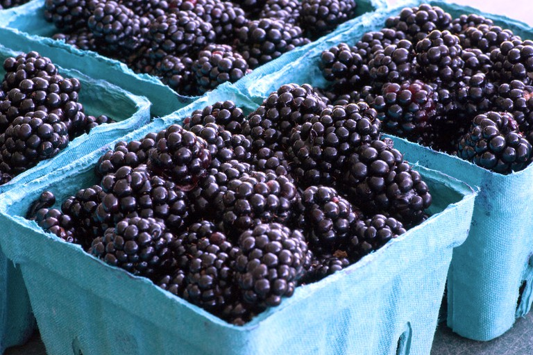 The boysenberry is a cross between a raspberry and a blackberry | © Dwight Sipler/Flickr