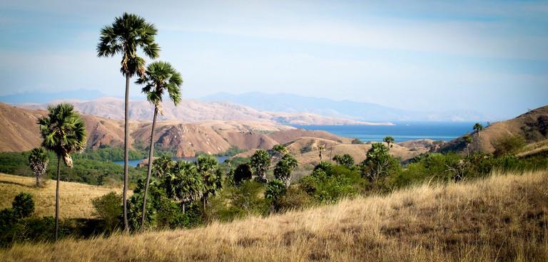 Komodo Island landscape