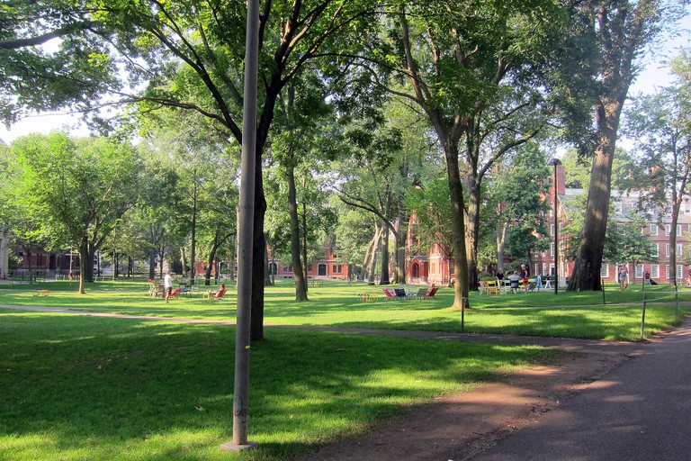 Harvard Yard | ©Librarygroover/Flickr
