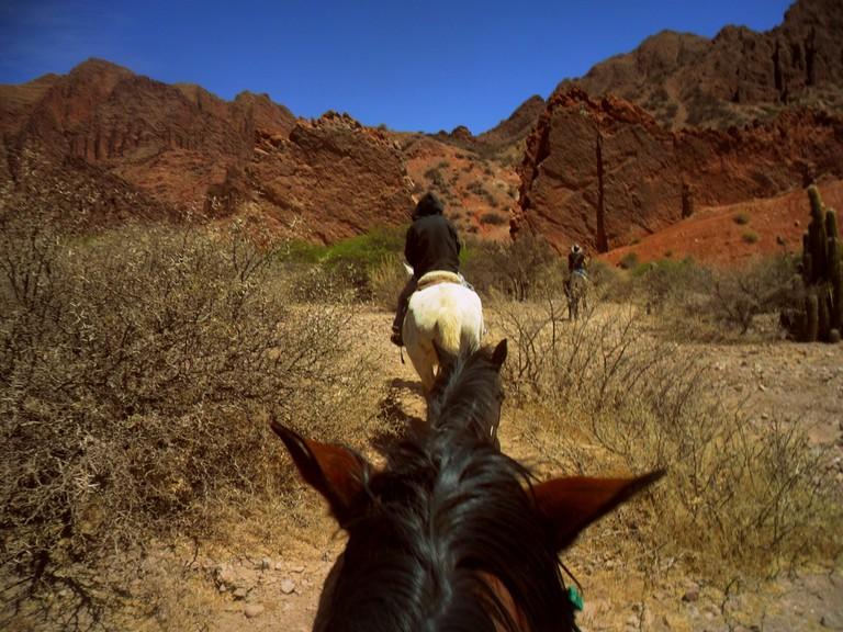 Tupiza horse riding