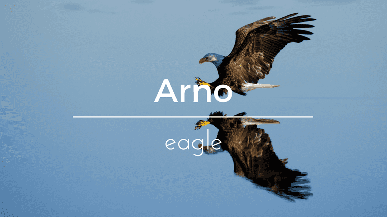 Arno South African name and its meaning