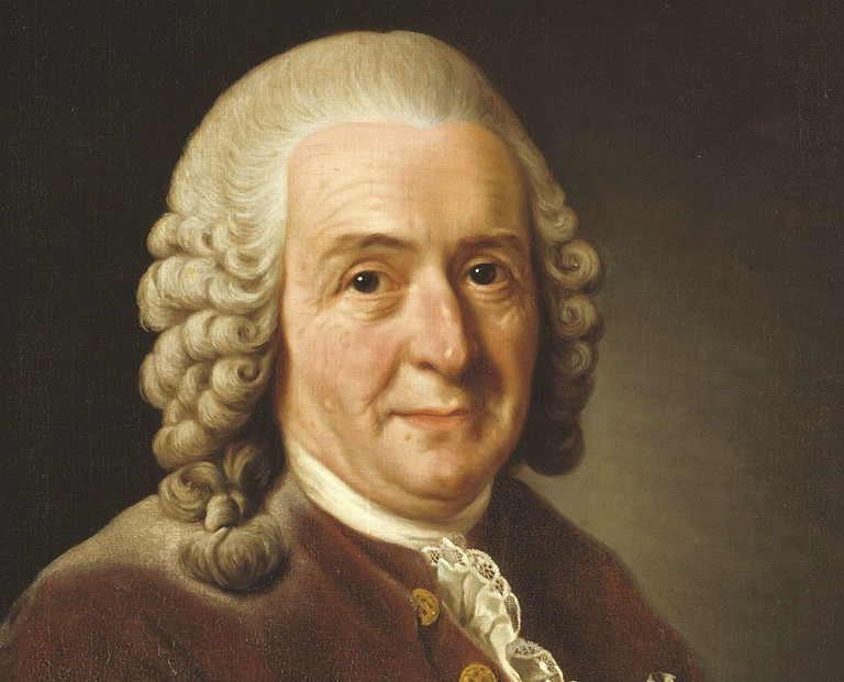 World-renowned botonist Carl Von Linnaeus / Photo courtesy of Wikipedia Commons