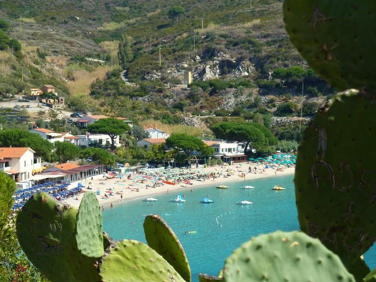Cavoli (Elba)