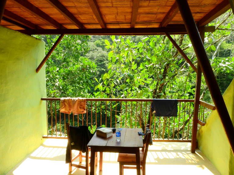 Lucky guests at Rio Claro can spot monkeys from their breakfast table