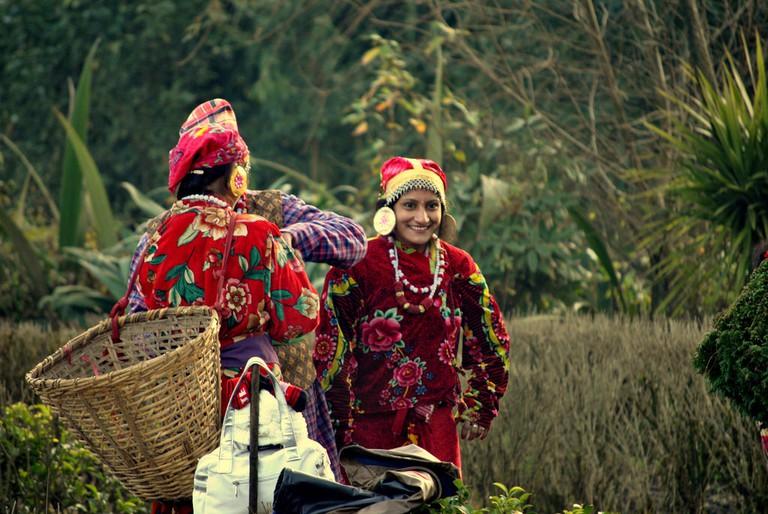 Farm Workers in Darjeeling