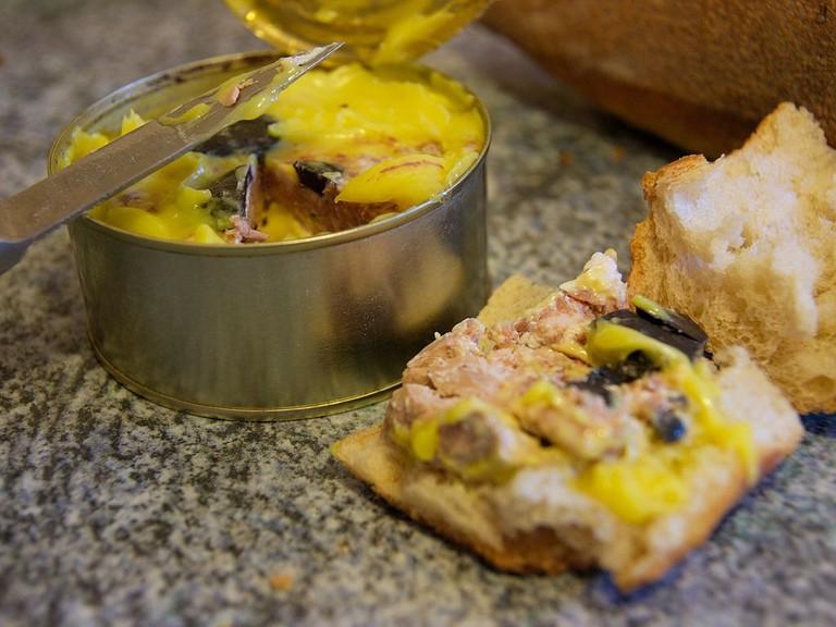 Goose foie gras/