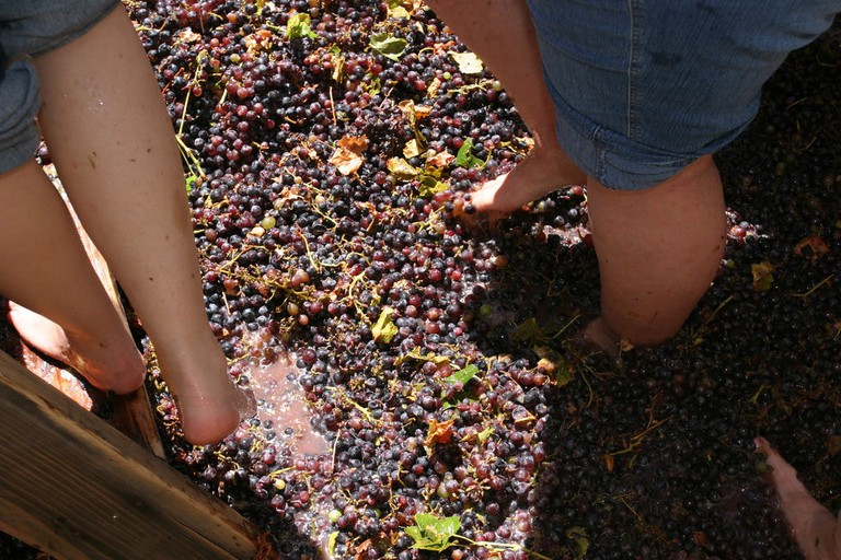 grape stomping at the Rioja Wine Harvest Festival | ©Jeffrey Keeton / Flickr