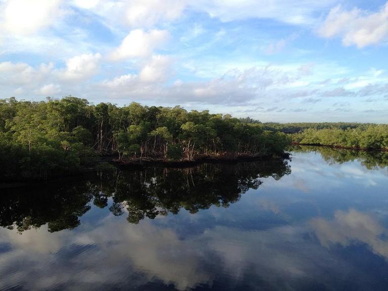 Courtesy of Oleta River State Park