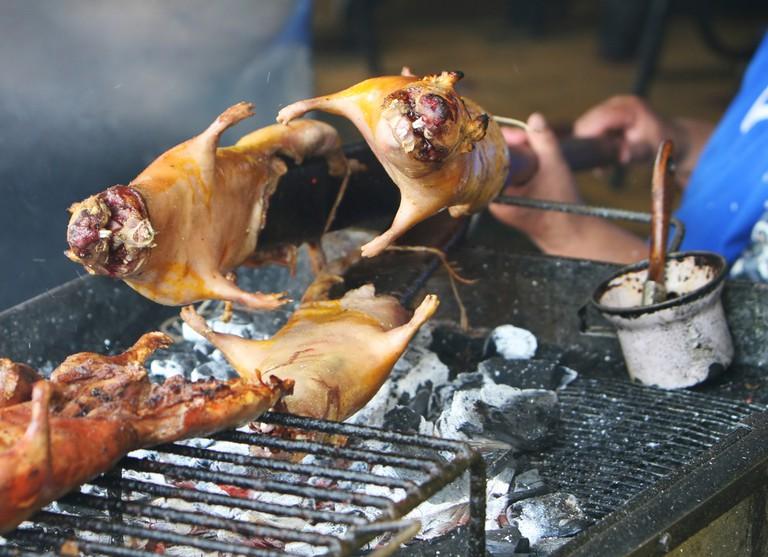 Ecuadorians roasting guinea pigs over hot coals