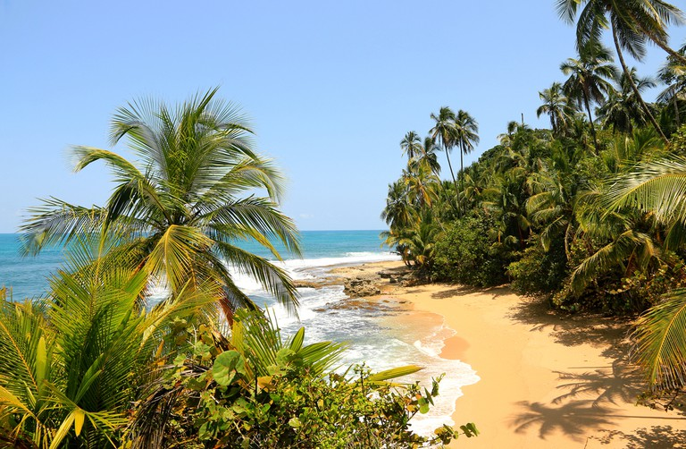 Pristine Costa Rican sands at Playa Manzanillo