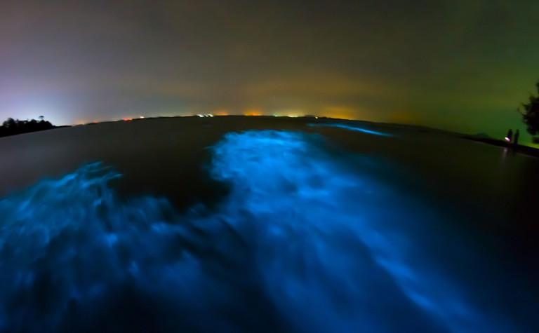 Bioluminescence in night sea water, Thailand