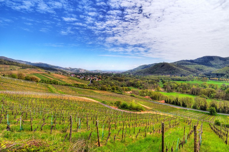 Munster Valley in Alsace