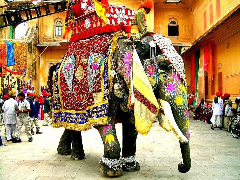 Decorated Indian Elephant © Faraz Usmani
