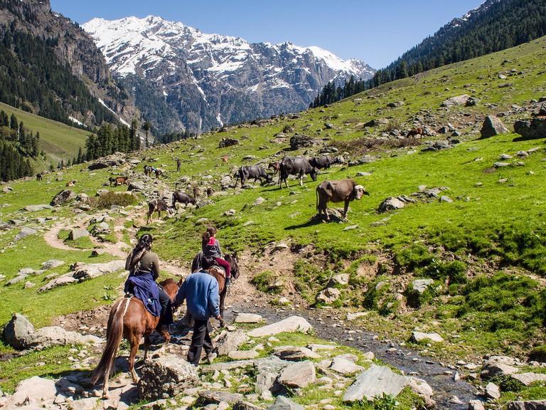 Riding horses at Lidder