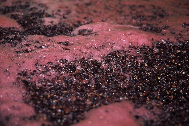 A red wine fermenting with skins © Pipers Brook Vineyard Media