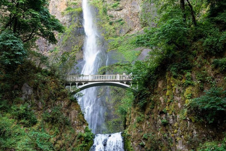 Multnomah Falls | © m01229/Flickr