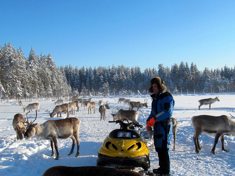 Feeding reindeer from a snowmobile / Heather Sunderland / Flickr