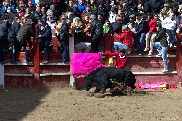 Bullfighting at Carneval de Toro, Ciudad Rodrigo