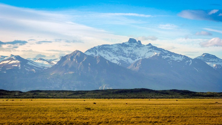 The wilds of Patagonia
