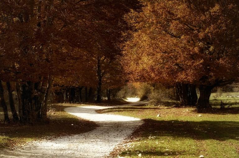 la strada©Paolo Fefe':Flickr