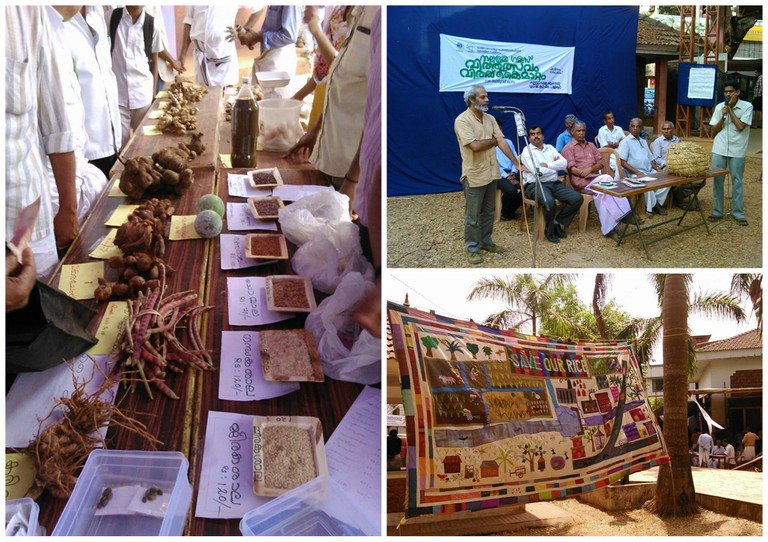Navdanya actively supports farmers in producing organic crops