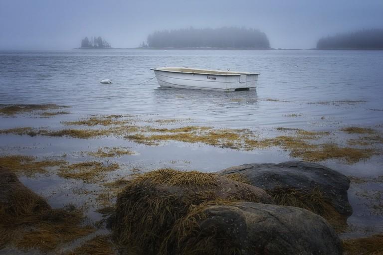 Rocks, Seaweed